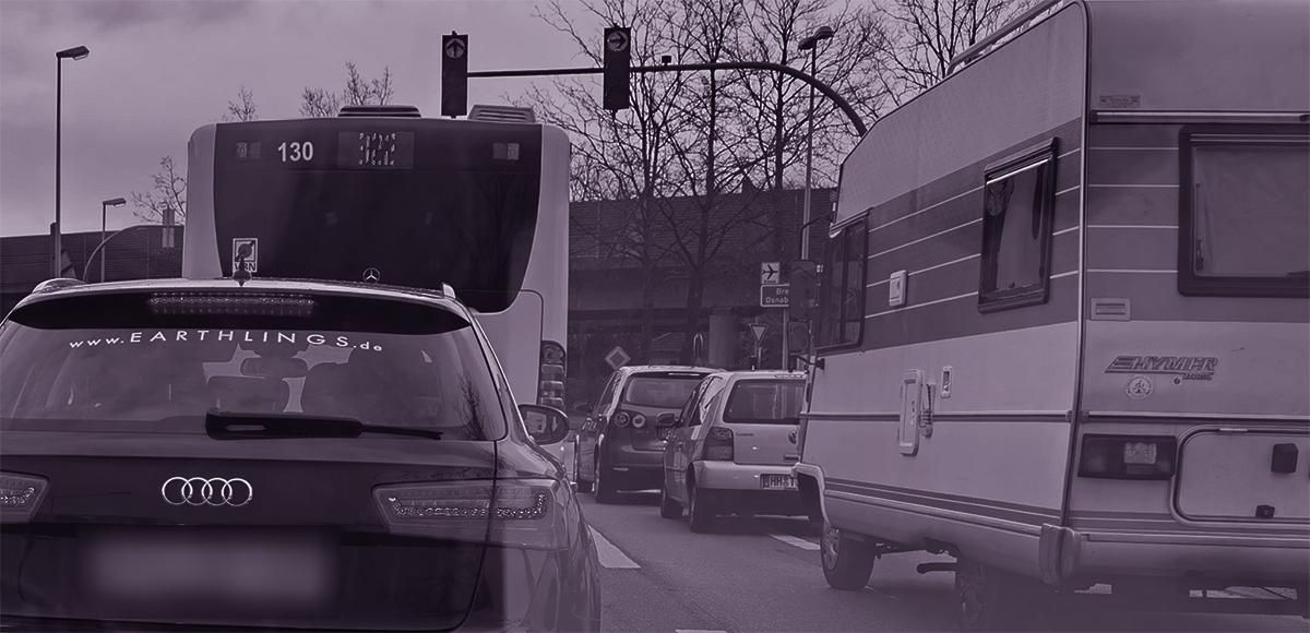 Earthlings Werbung auf der Heckscheibe eines Fahrzeugs in Oldenburg